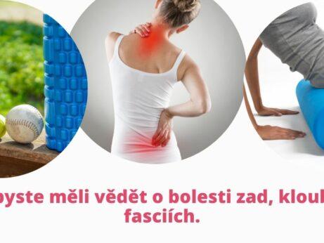 Co byste měli vědět o bolesti zad, kloubů a fasciích - martinafallerova.cz