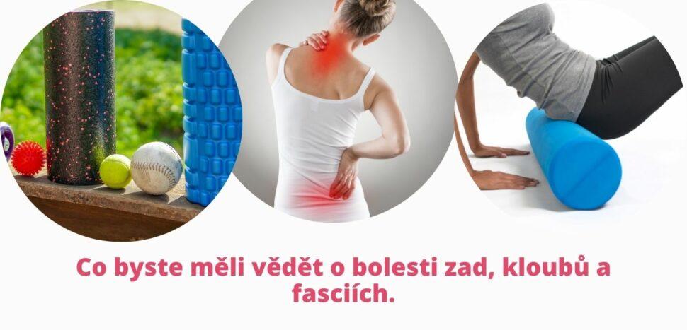 Co byste měli vědět obolesti zad, kloubů afasciích - martinafallerova.cz