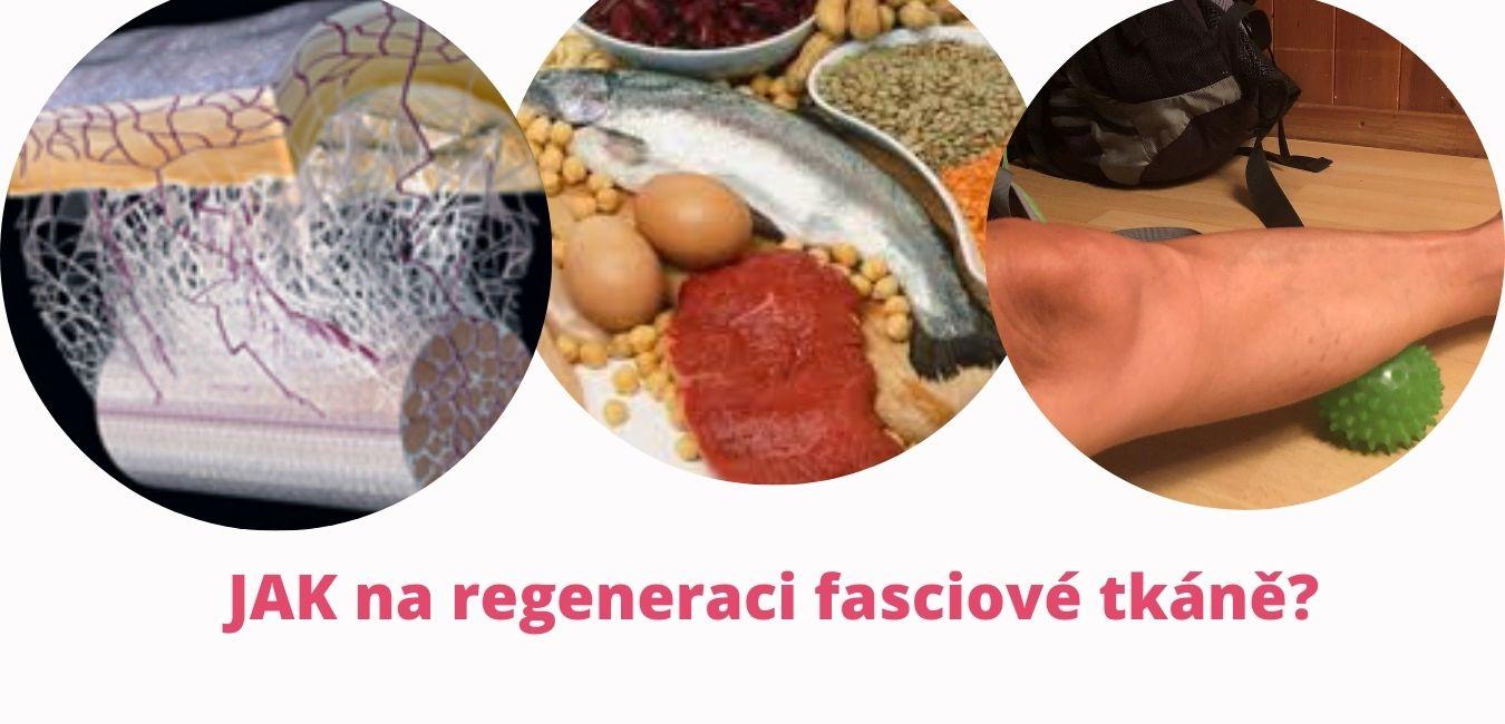 Jak na regeneraci fasciové tkáně? martinafallerova.cz